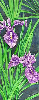 Purple Iris by Richard De Wolfe