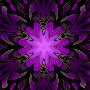 Hakon Soreide - Purple Kaleidoscopic Flower