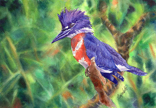 Purple Kingfisher by Barb Capeletti