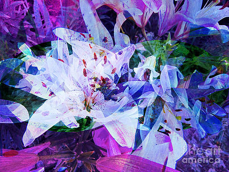 Shelly Leitheiser - Purple Lillies Abstract