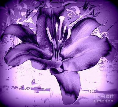 Purple Lilly by Susan Saver