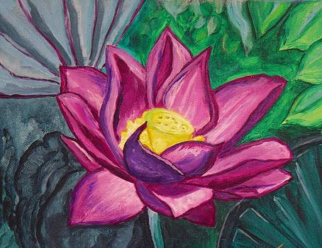 Purple Lotus by Faye Silliman