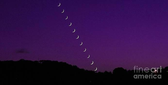 Michael Tidwell - Purple Moon Setting in West