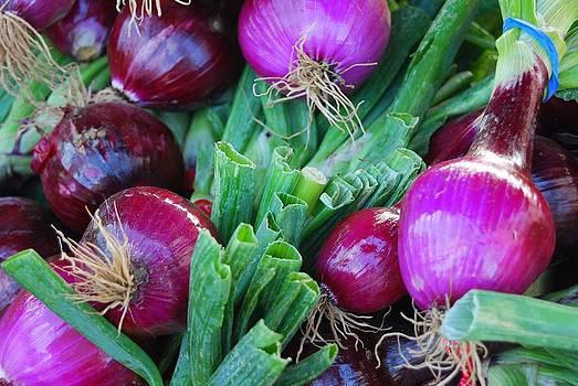 Purple Onions by Mamie Gunning
