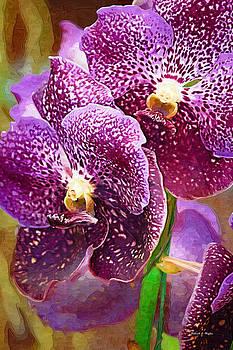 Deborah Hughes - Purple Orchid
