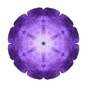 Purple Petunia I Flower Mandala White by David J Bookbinder