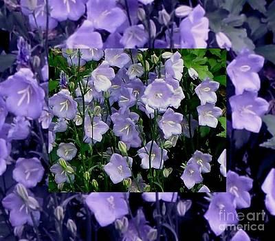 Gail Matthews - Purple Pleasure