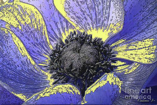 Purple Poppy by Jennifer Cadence Spalding