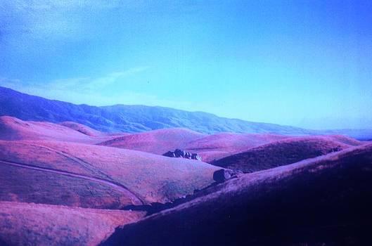 Purple Rolling Sierras by Jacquelyn Roberts