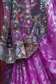Michele Burgess - Purple Sari