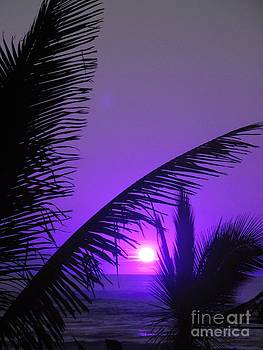 Purple Sunlight - Ile De La Reunion - Reunion Island by Francoise Leandre