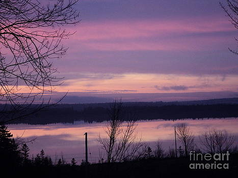 Purple Sunrise by Jesslyn Fraser