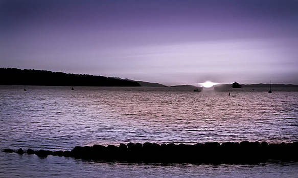 Purple Sunset at English Bay by Eva Kondzialkiewicz