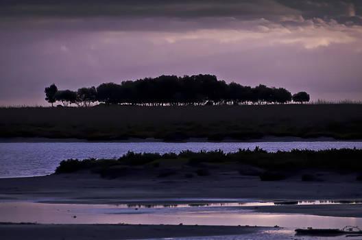 Australian Purple Sunset by Gej Jones