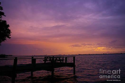 Tannis  Baldwin - Purple Sunset