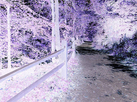 Purple trees by  Zoe Hadley