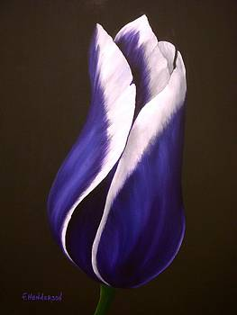 Purple Tulip by Francine Henderson