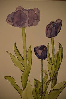 Purple Tulips by James Cox