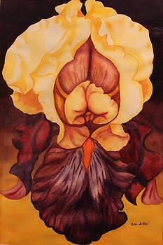 Ruth Soller - Purple Yellow Iris