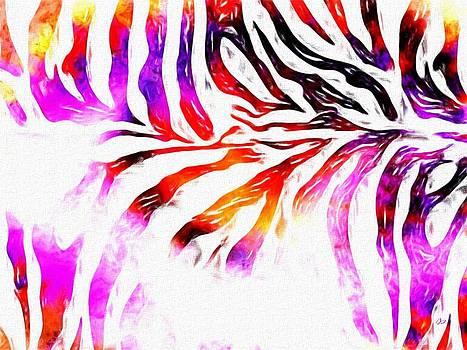 Jared Johnson - Purple Zebra