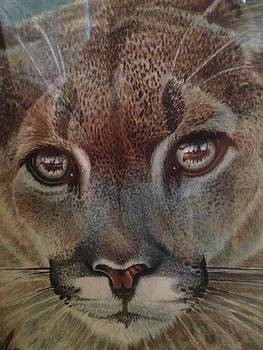 Pussy Cat    by Peter Jurik