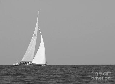 Wind In Your Sail by Maria Wood