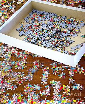 Puzzle Of Life  by Bobby Mandal