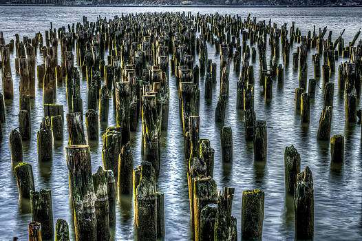 Pylons by Rafael Quirindongo