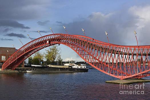 Python Bridge by Sara  Meijer