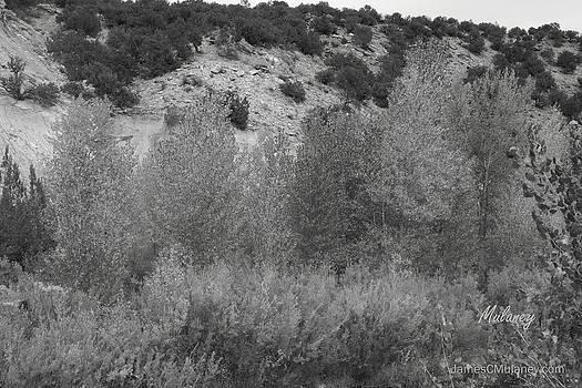 Quaking Ridge by James Mulaney