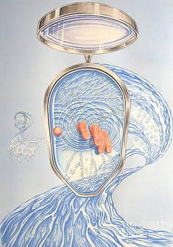 Quantum physics by Eric De clercq