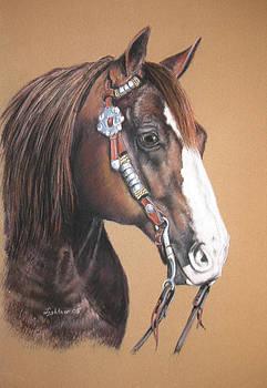 Quarter Horse by Barbara Lightner