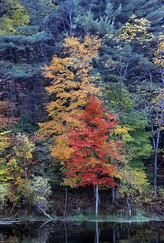 Harold E McCray - Queechie - Vermont