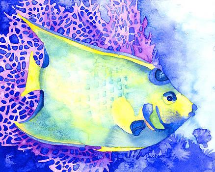 Queen Angelfish by Pauline Jacobson