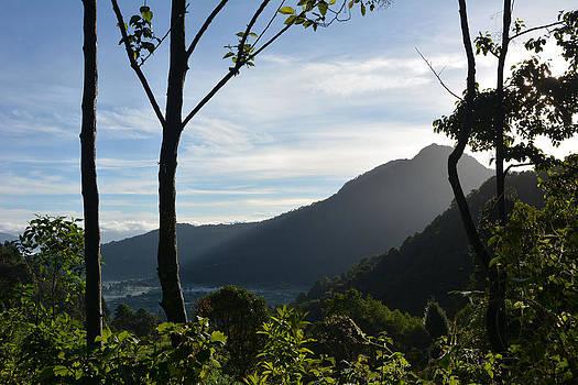 Quetzaltenango through the Trees by Lisa Lieberman