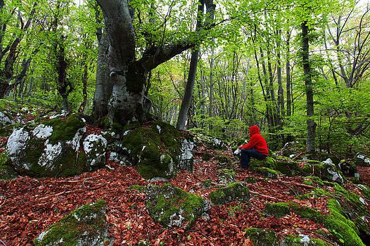 Quiet autumn by George Cislariu