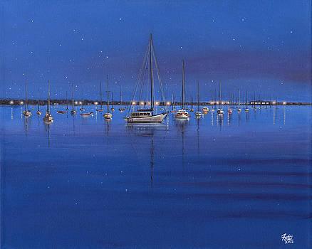Quiet Harbor by Anthony Fotia