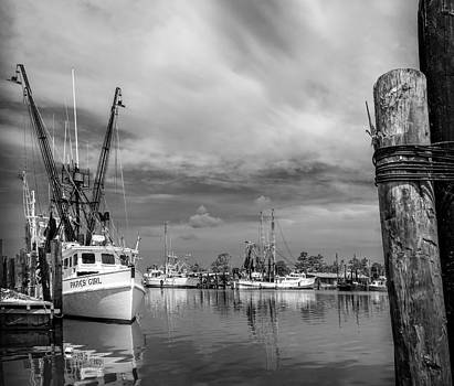 Quiet Marina by Chris Modlin