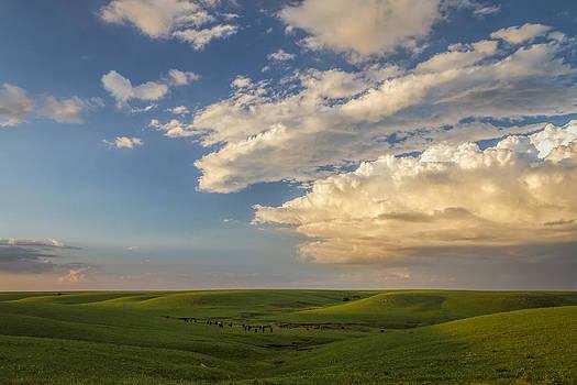 Scott Bean - Quiet on the Prairie