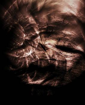 Quiet Storm  by Tonya Scales