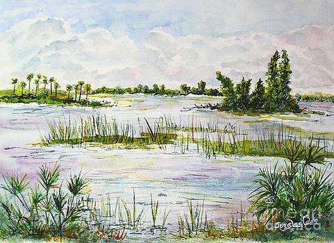 Quiet Waters Park Deerfield Beach FL by Janis Lee Colon