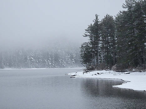 Quiet Winter Scene at the Lake 1 by Nancy De Flon
