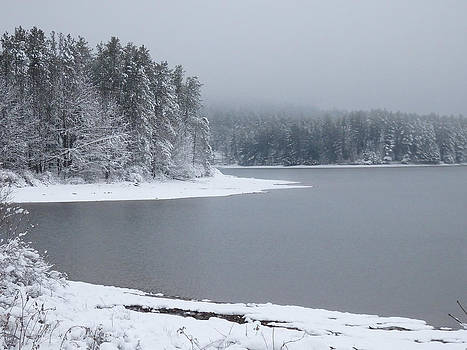 Quiet Winter Scene at the Lake 2 by Nancy De Flon