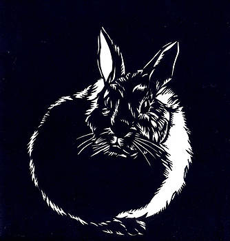 Alfred Ng - rabbit paper cut
