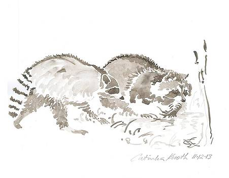 Raccoon rascals  clean food pond watercolor  drawing by Catinka Knoth