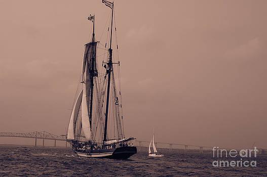 Dale Powell - Race the Wind