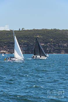 Bob Phillips - Racing in Sydney Harbour
