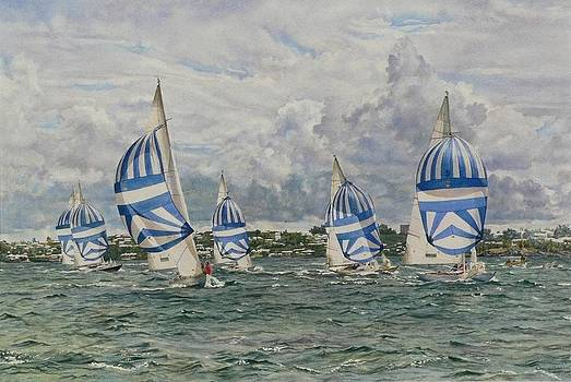 Racing Sailboats Bermuda by Cherie Sikking
