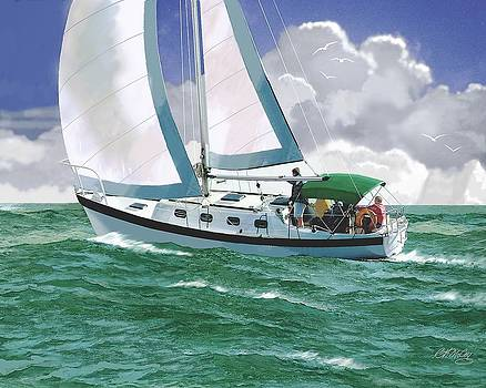 Racing the Storm by Robert McCoy