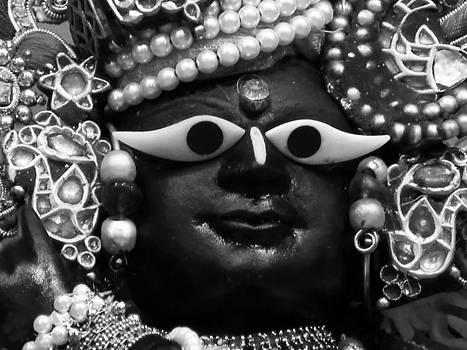 Radha-Raman by Lila Shravani